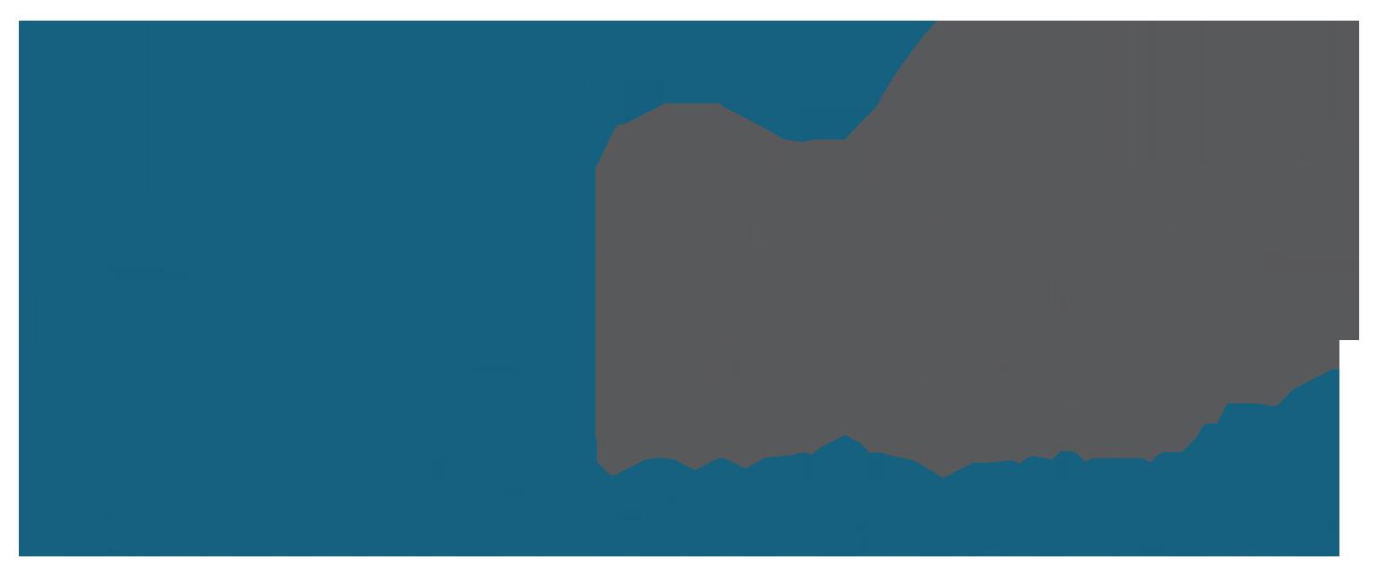 bsf trademark logo